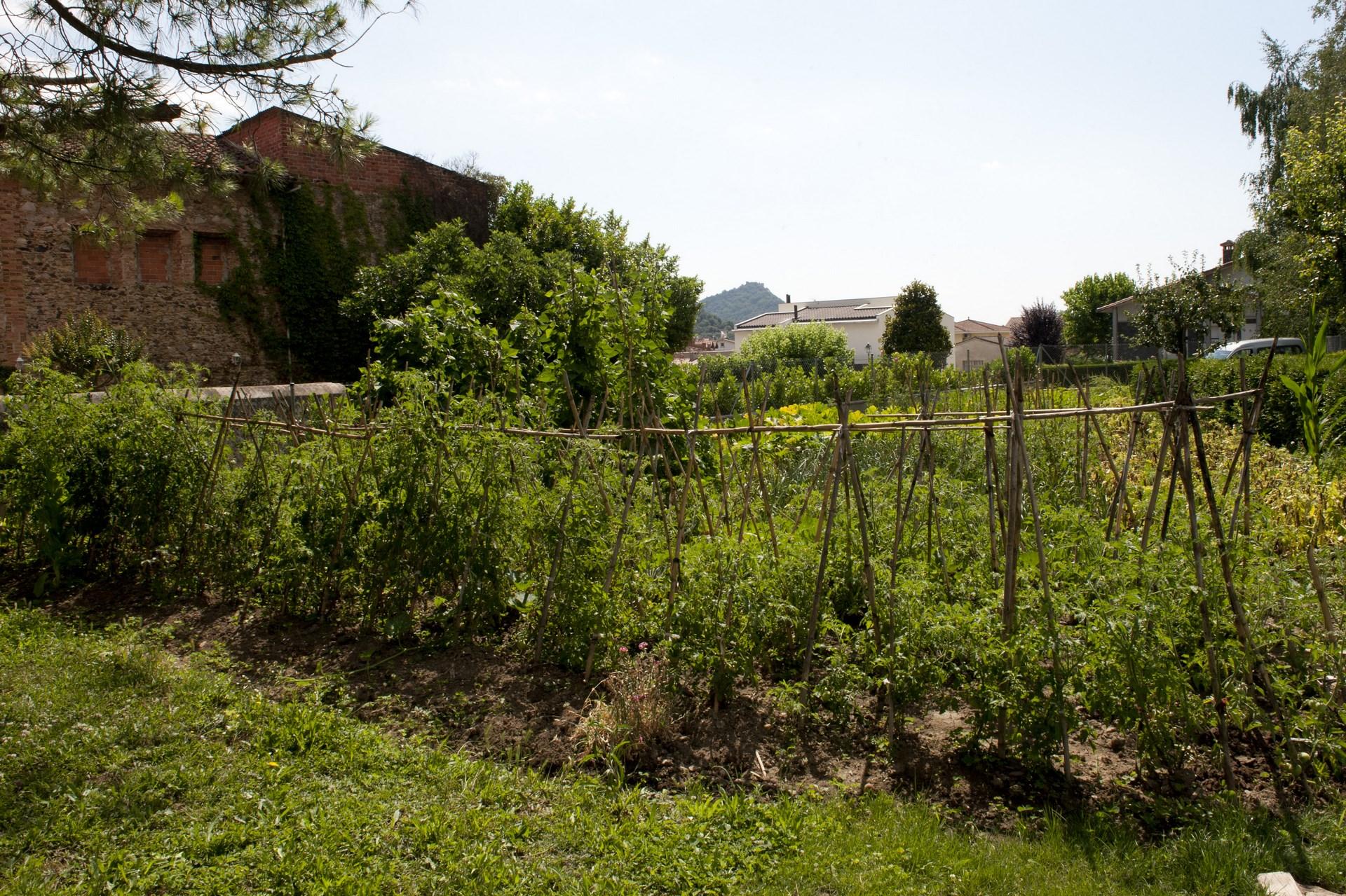 Casa Prat - hort
